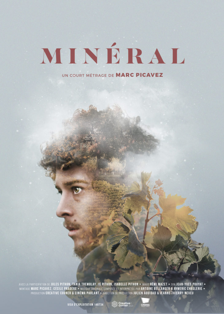 AFFICHE MINERAL 15x21